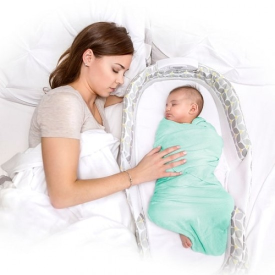 Baby delight Snuggle Nest Harmony - Silver Blossom (BD03730)