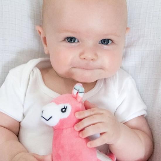 Bubble Buddy - Lola the Llama