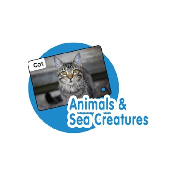 CrocoPen Talking Flash Cards - Animal & Sea Creature