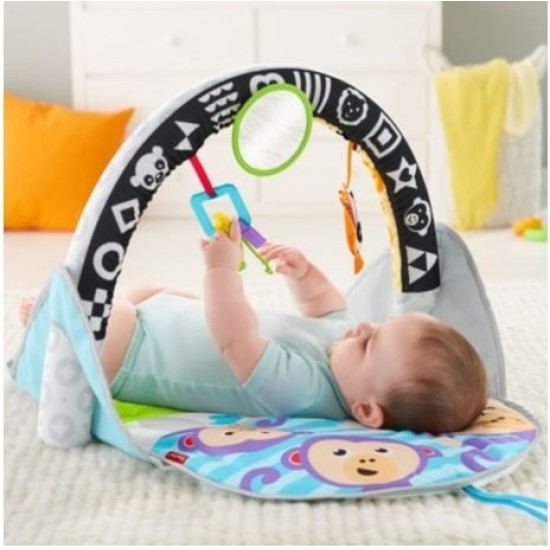 Fisher Price 2-in-1 Flip & Fun Activity Gym