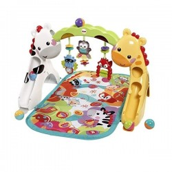 Fisher Price Newborn-to-Toddler Play Gym  CCB70