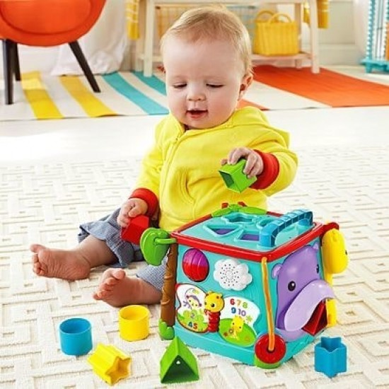 Fisher Price Play & Learn Activity Cube (DNP32)