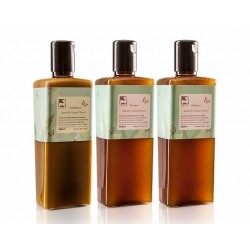 Ginger Ginger Butterfly White Ginger Flower Shampoo and Conditioner Gift Set