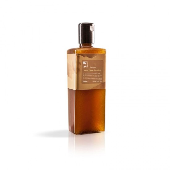 Ginger Ginger Shampoo 360 ml