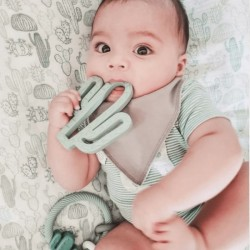 itzy Ritzy Silicone Baby Teether - Catcus